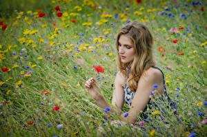 Bilder Grünland Gras Sitzt Viktoria junge frau