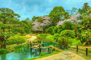 Fotos Japan Parks Teich Brücken HDR Strauch Bäume Okayama Korakuen