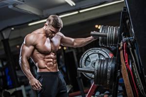 Fotos Mann Bodybuilding Muskeln Sport