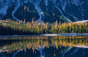 Bilder Berg See Wald Italien Spiegelt South Tyrol, Dolomites, Lake Braies