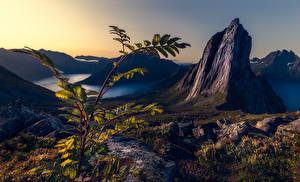 Fotos Berg Norwegen Ast Canyons Felsen Segla, Troms Natur