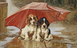 Fotos Malerei Hund Regenschirm Pfütze 1893 William Henry Hamilton Trood, Wait Till the Clouds Roll By