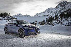 Bilder Alfa Romeo Blau Metallisch 2019-20 Stelvio Sprint auto