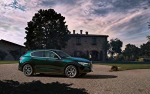 Bilder Alfa Romeo Grün Metallisch 2019-20 Stelvio Ti auto