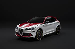 Fotos Alfa Romeo Fahrzeugtuning Weiß 2019-20 Stelvio Quadrifoglio Racing Autos