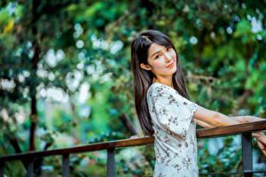 Bilder Asiaten Unscharfer Hintergrund Haar Starren Süßer Brünette Mädchens