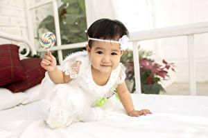 Bilder Asiatische Dauerlutscher Blick Hand Niedlich Kleine Mädchen Kinder