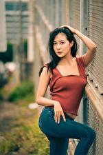 Bilder Asiatische Pose Jeans Hand Brünette Blick junge Frauen