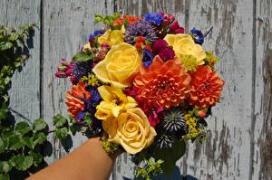 Fotos Sträuße Rose Dahlien Blumen