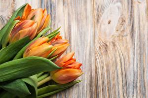 Papel de Parede Desktop Buquês Tulipa Tábuas de madeira Laranja flor