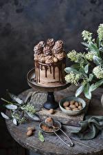 Bilder Torte Süßware Schokolade Design Kakaopulver