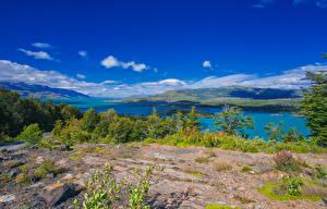 Hintergrundbilder Chile See Küste Hügel Strauch Ultima Esperanza Patagonia