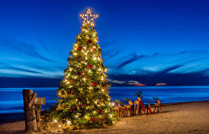 Pictures New year Coast Deer New Year tree Fairy lights Sand Little stars Balls Nature