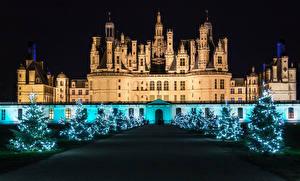 Fotos Neujahr Frankreich Burg Allee Weihnachtsbaum Lichterkette Nacht Chambord Städte