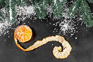 Photo New year Mandarine Branches