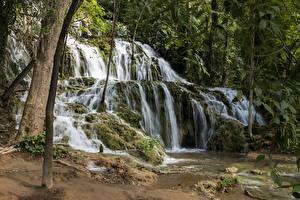 Fotos Kroatien Parks Wasserfall Felsen Laubmoose Bäume Krka National Park Natur