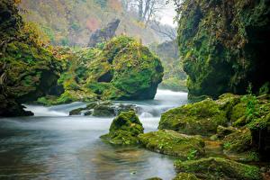 Bilder Kroatien Fluss Stein Felsen Laubmoose Korana River Natur