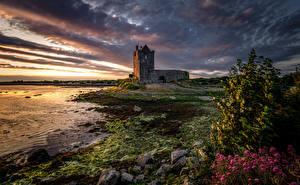 Bilder Abend Morgendämmerung und Sonnenuntergang Burg Irland Türme Dunguaire Castle, Galway Bay Natur