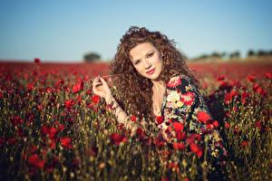 Images Fields Poppies Bokeh Sit Glance Brown haired Hairstyle Alba Morales young woman