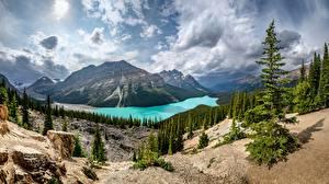Hintergrundbilder See Berg Kanada Landschaftsfotografie Wolke Bäume Banff Alberta, Peyto Lake Natur