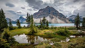 Images Mountains Lake Canada Landscape photography Trees Clouds Banff Bow Lake, Alberta Nature