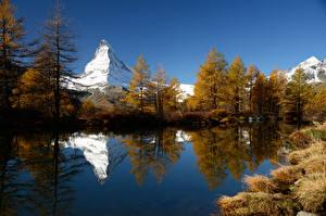 Bilder Berg See Schweiz Bäume Spiegelt Grindjisee Natur