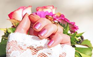 Picture Roses Fingers Closeup Hands Manicure Ring Gold color