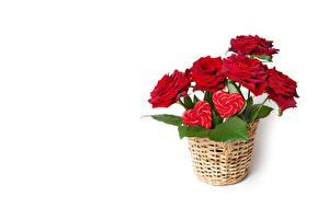 Hintergrundbilder Rose Weißer hintergrund Weidenkorb Blumen