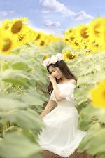 Hintergrundbilder Sonnenblumen Asiatisches Kleid Kranz junge frau