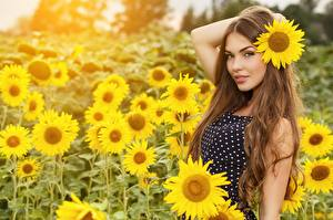 Wallpapers Helianthus Fields Blurred background Posing Gown Hands Brown haired young woman