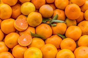 Bilder Textur Mandarine Viel das Essen