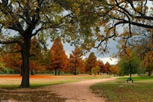 Hintergrundbilder Vereinigte Staaten Parks Herbst Texas Bäume North Georgetown Natur