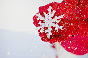 Bakgrundsbilder på skrivbordet Vinter Närbild Snöflingor Hand Handskar Röd