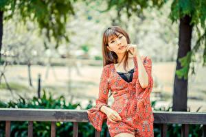 Hintergrundbilder Asiaten Unscharfer Hintergrund Braunhaarige Starren Mädchens