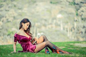Fotos Asiatische Unscharfer Hintergrund Gras Sitzend Bein Kleid Dekolleté Schöne Braune Haare junge frau