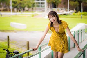 Hintergrundbilder Asiatisches Bokeh Pose Kleid Dekolleté Braunhaarige junge Frauen