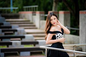 Bilder Asiaten Unscharfer Hintergrund Posiert Kleid Hand Braune Haare Starren Schöne junge frau