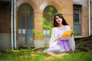 Fotos Asiaten Unscharfer Hintergrund Sitzt Kleid Kranz Braune Haare Starren junge frau