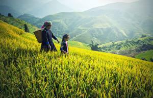 Fonds d'écran Asiatiques Montagne Champ Herbe Petites filles Femmes âgées Panier en osier 2 enfant Nature