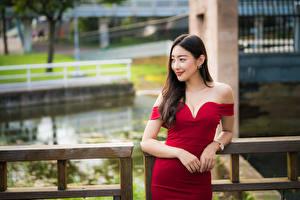 Fotos Asiaten Posiert Kleid Hand Dekolletee Lächeln Braune Haare junge frau