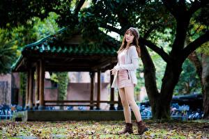 Bilder Asiaten Posiert Bein Kleid Braune Haare junge frau