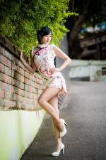 Fotos Asiatische Pose Stöckelschuh Bein Kleid Brünette Mädchens