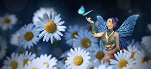 Fotos Kamillen Schmetterling Feen Mädchens 3D-Grafik