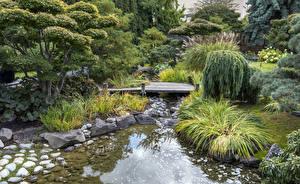Wallpaper Canada Gardens Streams Trees Bush Kelowna Kasugai Gardens Nature