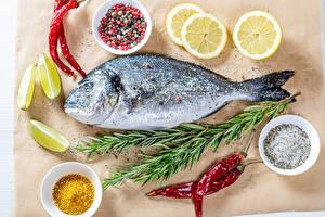 Bilder Fische - Lebensmittel Gewürze Chili Pfeffer Zitrone Salz