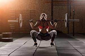 Images Fitness Barbell Back view Physical exercise Hands Legs Human back young woman