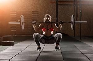 Bilder Fitness Hantelstange Hinten Körperliche Aktivität Hand Bein Rücken Junge frau Mädchens