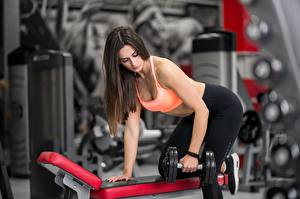 Images Fitness Brown haired Physical exercise Dumbbell Hands Posing young woman