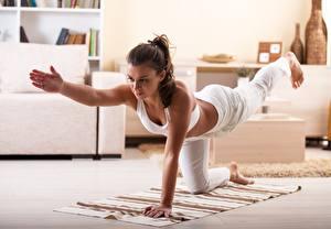 Bilder Fitness Bein Hand Posiert Braunhaarige Trainieren junge frau