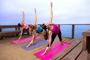 Fotos Fitness Drei 3 Körperliche Aktivität Hand Bein Mädchens
